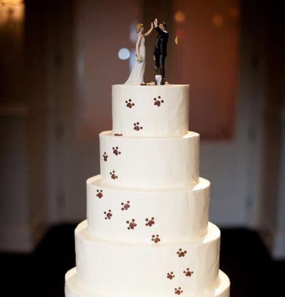 svatba svatebni dort domaci mazlicci tlapky kocka pes